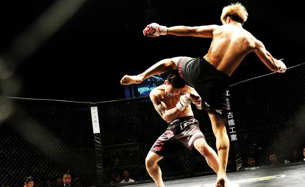 combate mma, mixed martial arts, artes marciales mixtas